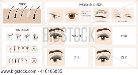 Eyelash Growth, Eyelash Extensions Types And Styles. Illustration With Instructions And Guides For L