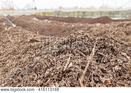 Industrial Compost Plant. Collection Point For Fresh Green Waste. Turning Organic Waste To Compost S