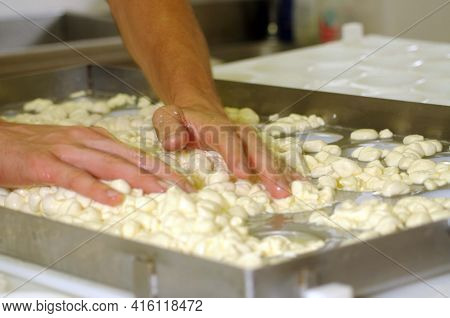 The Production Of Cream Cheese