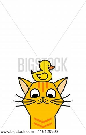 Cat With Yellow Rubber Duck. Cat And Duck