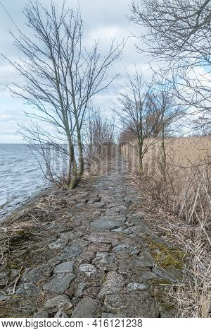 Path Among Trees To Estuary Vistula River To The Baltic Sea At Windy Day.