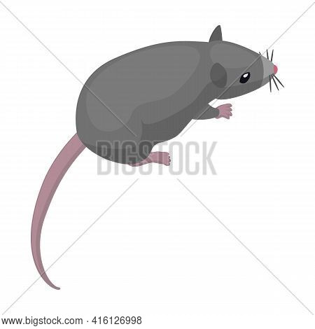 Mouse Vector Icon.cartoon Vector Icon Isolated On White Background Mouse.
