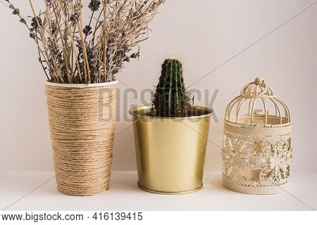 Potted Plants On Table Against Black Background