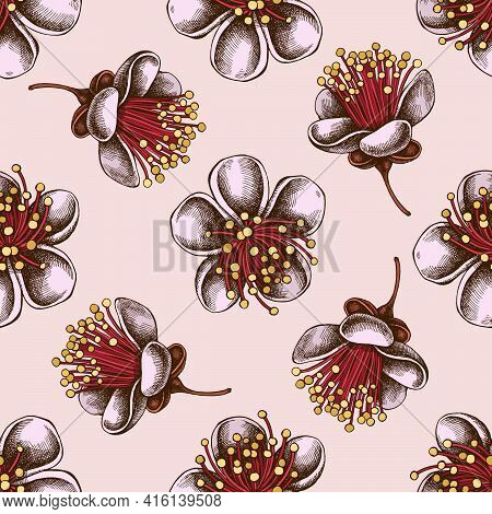 Seamless Pattern With Hand Drawn Colored Feijoa Flowers Stock Illustration