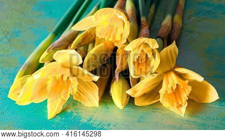 Top View Of Daffodils Flowers. Yellow Daffodils On A Wooden Green Table. Toned Image. Shallow Depth