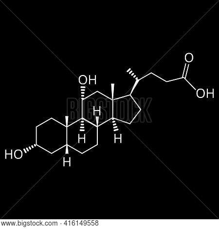 Chenodeoxycholic Acid. Bile Acid. Chemical Molecular Formula Chenodeoxycholic Acid. Vector Illustrat