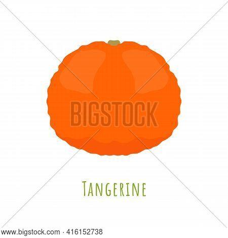 Single One Tangerine Fruit Isolated On White