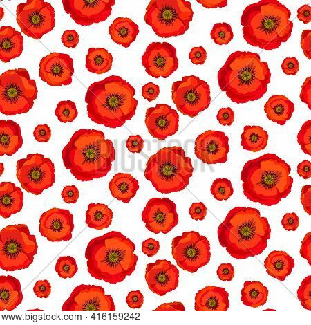 Seamless Pattern Red Poppies Isolated On White Background. Bright Flowers Poppies Perfect Fit For De