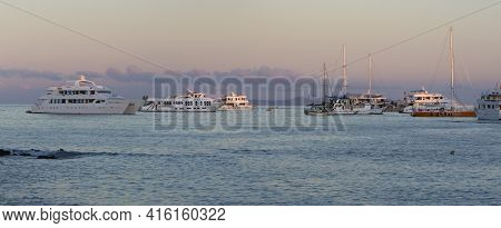 Puerto Ayora, Ecuador, February 12: Panorama Of Sunset, A Pelican And Cruise Ships In The Port Of Pu