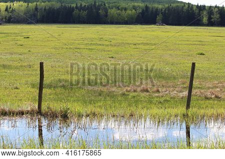 A Green Pasture With Water Along The Fence In The Ditch