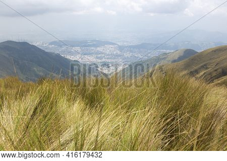 Spectacular View Of The Mountain, The Grass And Quito In The Background, The Capital Of Ecuador.