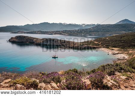 A Sailing Yacht Is Moored In A Bay On The Translucent Mediterranean Sea On The Coast Of La Revellata