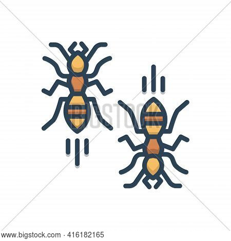 Color Illustration Icon For Ants Insect Hardworking Bug Small Animal