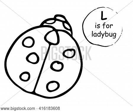Cute Nice Ladybug, Ladybird. Hand Drawn Cartoon Sketch Style Colorful Vector Illustration. Concept F