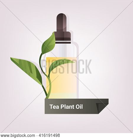 Dropping Essential Tea Plant Oil Glass Bottle With Yellow Liquid And Leaves Natural Face Body Beauty