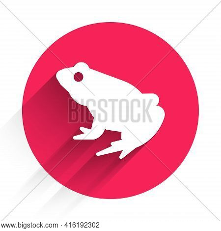 White Frog Icon Isolated With Long Shadow. Animal Symbol. Red Circle Button. Vector