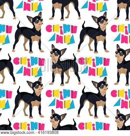 Dog Breed Chihuahua Seamless Pattern. Vector Flat Illustration.