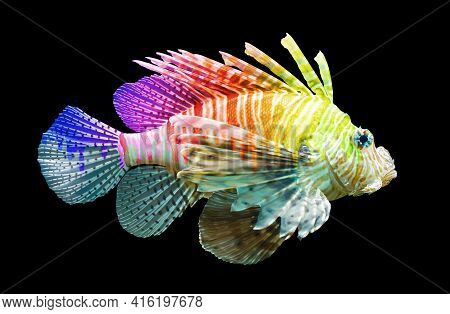 Pterois Volitans, Lionfish - Isolated On Black - Unique Rainbow, Dripping Paint