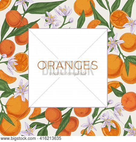 Template Design With Citrus Fruits, Leaves And Flowers Of Blooming Orange Tree. Square Card With Tro