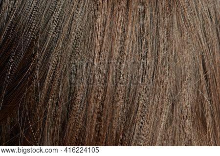 Dark Brown Straight Hair