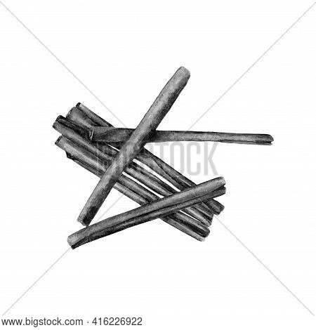 Hand Drawn Sketch Style Cinnamon Sticks. Vector Illustration Isolated On White Background. Healthy