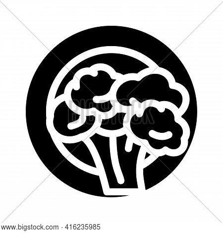 Vegetarian Diet Glyph Icon Vector. Vegetarian Diet Sign. Isolated Contour Symbol Black Illustration