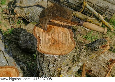 Old Metal Ax With Wooden Handle Stuck In The Wooden Log Close-up Across Logs. Wood Chopping Process.
