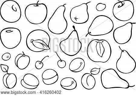 Big Vector Set With Apricot Fruits. Design For Coloring Book. Peach, Cherry, Plum, Apricot, Apple An