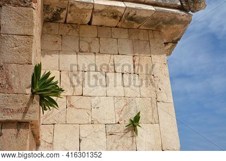 Governor's Palace Is One Of The Most Admired Of Pre-columbian Structures. Located In Uxmal, Yucatan,