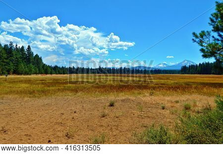 Summer Dryness - A View Looking Southeast Across Black Butte Swamp In July - Three Sisters And Broke