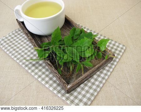 A Cup Of Herbal Tea With Dog Rose Leaves