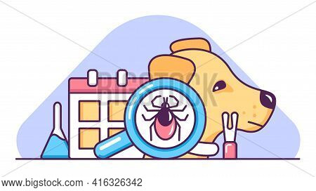 Dog Tick Season. Anti-glue Protection Methods. Prevention Of Lyme And Encephalitis Diseases. Medical
