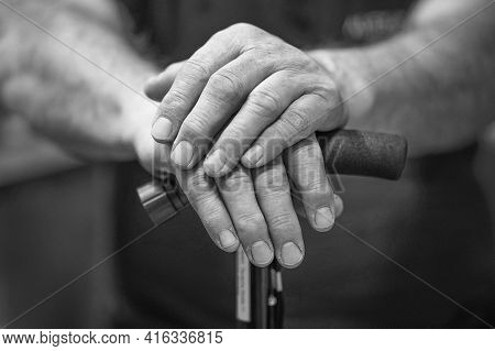 Black And White Photography Hands Senior Man Holding Cane. Senior Man Holding Cane. Close-up Of Old