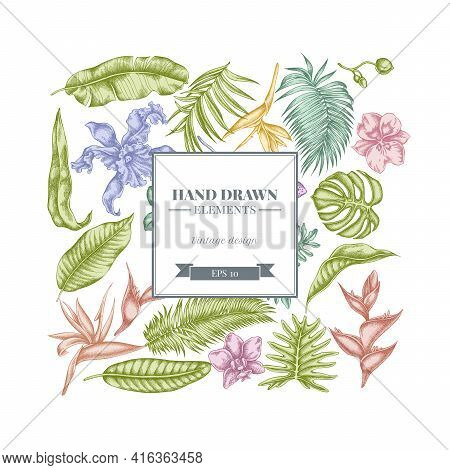 Square Floral Design With Pastel Monstera, Banana Palm Leaves, Strelitzia, Heliconia, Tropical Palm