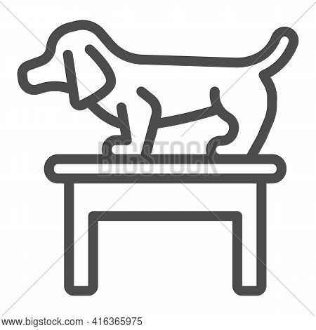 Dog On Table Line Icon, Animal Hospital Concept, Dachshund Standing On Table At Veterinary Office Si