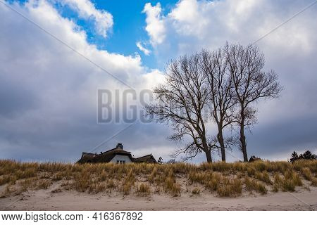 Tree, Building And Dune On Shore Of The Baltic Sea In Ahrenshoop, Germany.