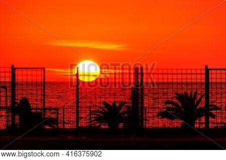 Big Sun Over The Tropical Sea . Spectacular Tropical Sundown . Coastal Palm Trees In The Evening Wit