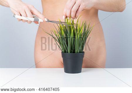 A Naked Faceless Woman Cuts A Bush. Epilation Of The Bikini Zone On A White Background