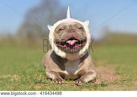 Happy Smiling French Bulldog Dog Wearing Costume Unicorn Headband