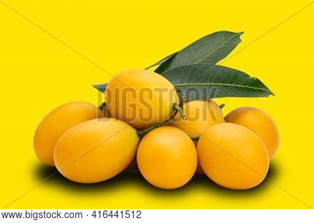 Pile Of Ripe Marian Plum With Leaves On Yellow Background With Clipping Path. Freshly Harvested Ripe