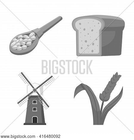 Vector Illustration Of Grain And Harvest Symbol. Set Of Grain And Farm Vector Icon For Stock.