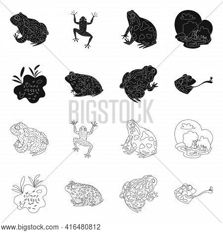 Vector Design Of Wildlife And Bog Icon. Collection Of Wildlife And Reptile Vector Icon For Stock.