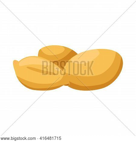 Isolated Object Of Peanut And Food Icon. Collection Of Peanut And Fresh Stock Vector Illustration.
