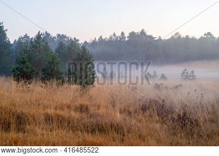 Mountain Field With Low Fog On A Hazy Autumn Day