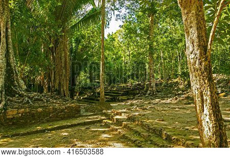 Remaining Stones From Old Buildings Along The Path Between Temples And Pyramids In Chacchoben, Maya
