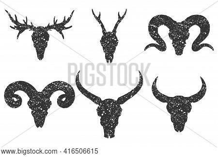 Vector Set Of Six Hand Drawn Skulls Of Horned Animals: Buffalo, Bull, Deer And Ram On White Backgrou