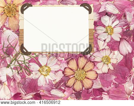 Background Of Fragments Broken Flowers. Bouquet, Boutonniere Of Dry Flower. Scrapbooking Element Con