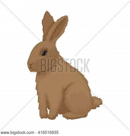 Rabbit Vector Cartoon Icon. Vector Illustration Bunny On White Background. Isolated Cartoon Illustra