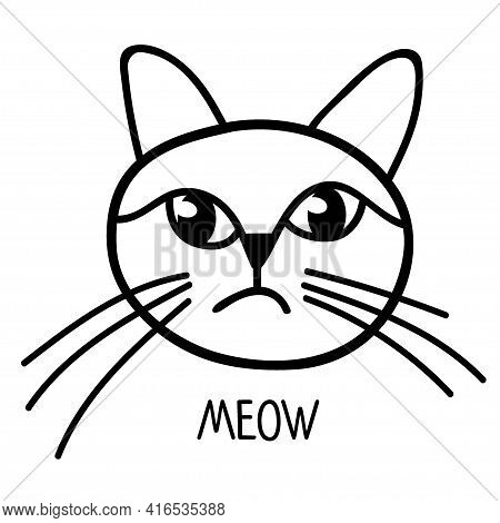Cat Face Sketch With Text Meow. Cat Isolated Objects On White Background. Design Concept For Childre
