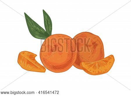 Whole Tangerines With Peeled Slices Of Mandarin Or Clementine. Citrus Fruits, Their Pieces And Leave